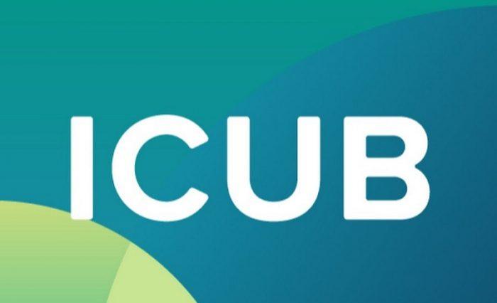 bursele-icub (1)