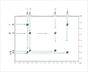 Figura 2D. Spectrul 2D COSY-RMN al oxodiazolului (martor)