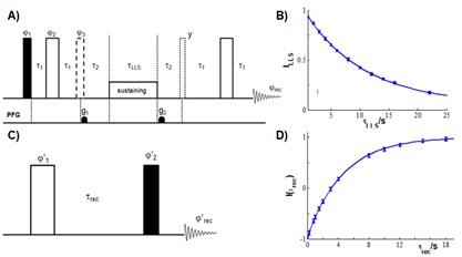 Figura 4: (A) Experimentele RMN utilizate pentru LLS; (B) Profilul de relaxare al LLS obținut pentru oxodiazol la B0 = 11.75 T, spinii (K, R); (C) Experimente RMN inversion-recovery; (D) Curba inversion-recovery pentru experimentele efectuate asupra spinului R din martor.