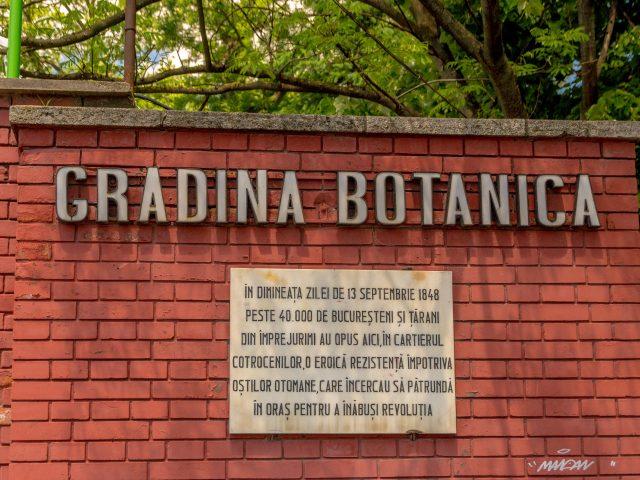 2019.05.22 - Gradina Botanica - 192